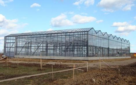 Фермерская теплица 576 м2